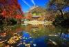 韩国 红叶 寺庙 包车一日游
